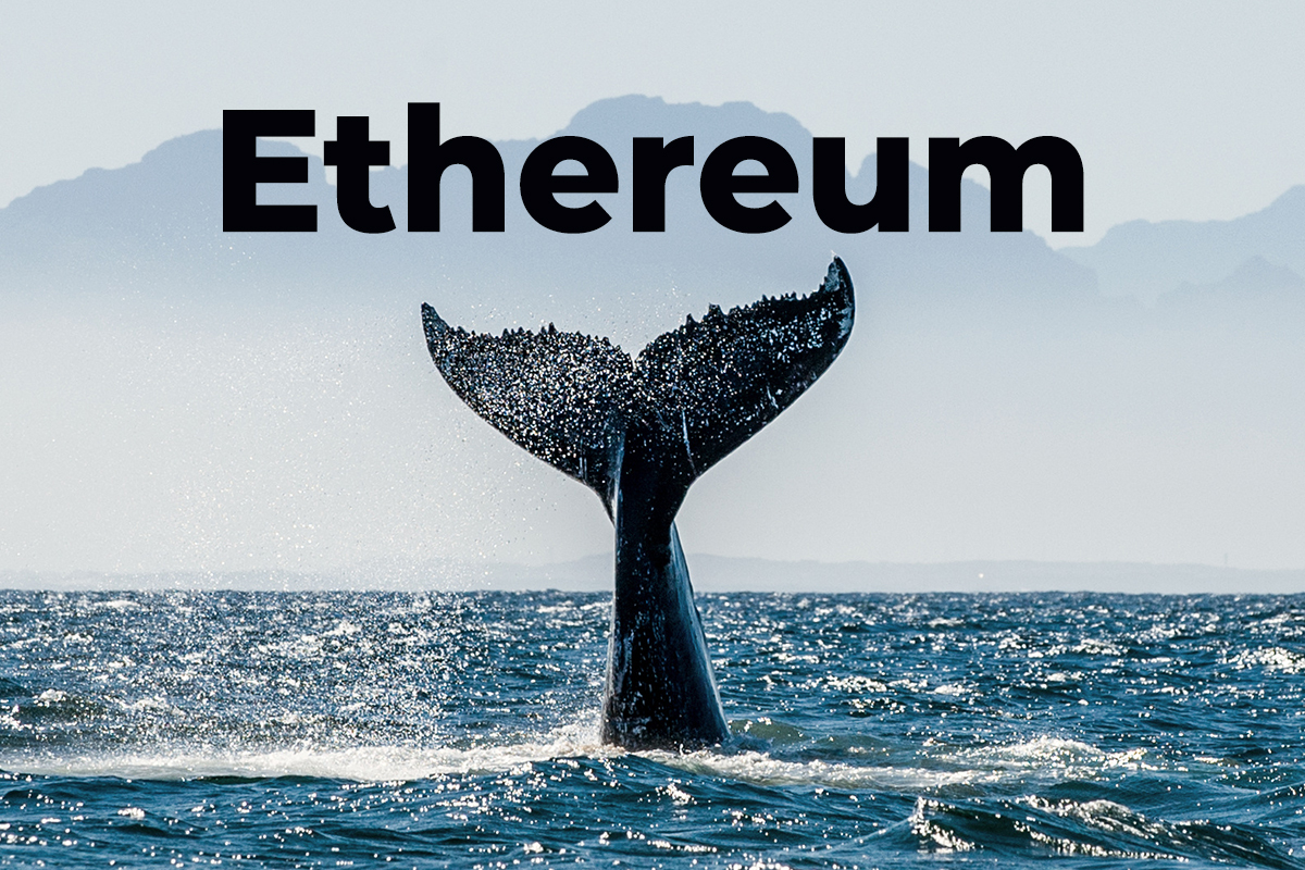 """Ethereum """"Millionaire Tier"""" Whales Now Hold 39.2% ETH Supply, Pushing Price Close to $2,700: Santiment"""