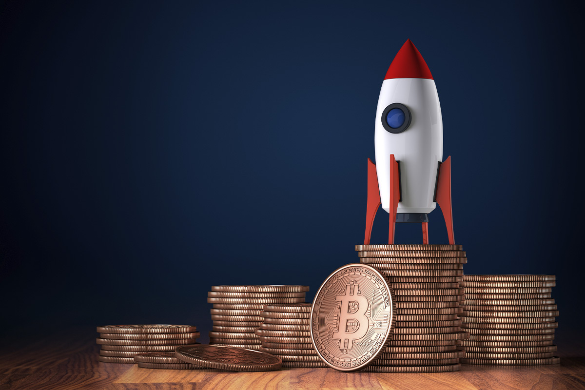 Bitcoin Entities Growth Hits New All-Time High: Report
