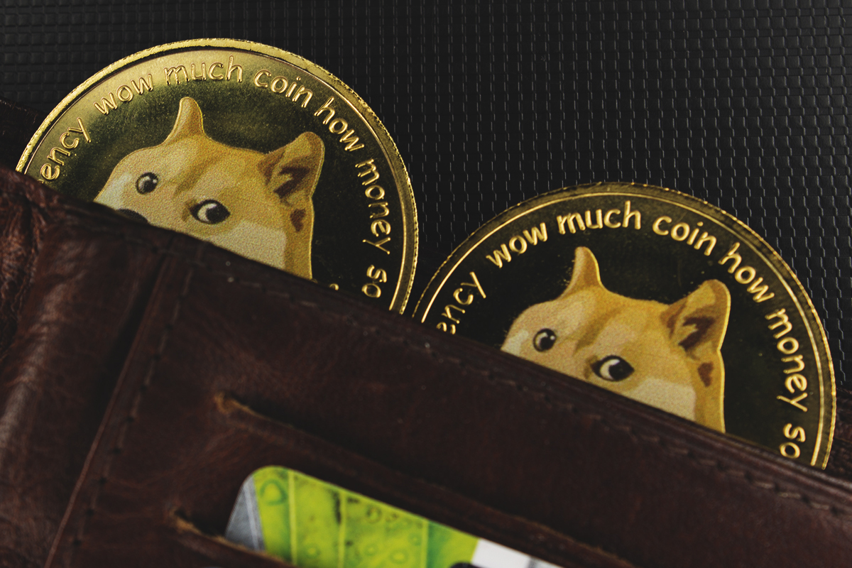 As Dogecoin Spikes 13%, Former DOGE Millionaire Thinks of Grabbing Some More