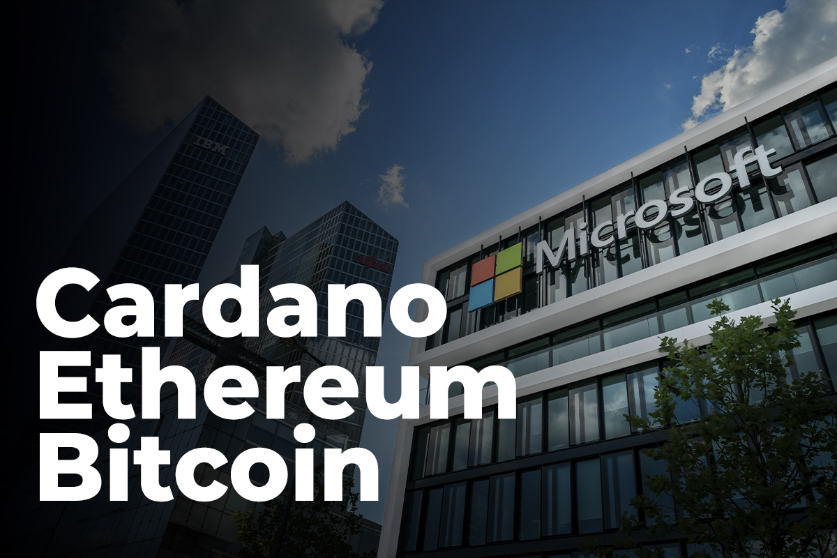 Peter Brandt Suggests That Cardano, Ethereum and Bitcoin Could Follow Microsoft's Path