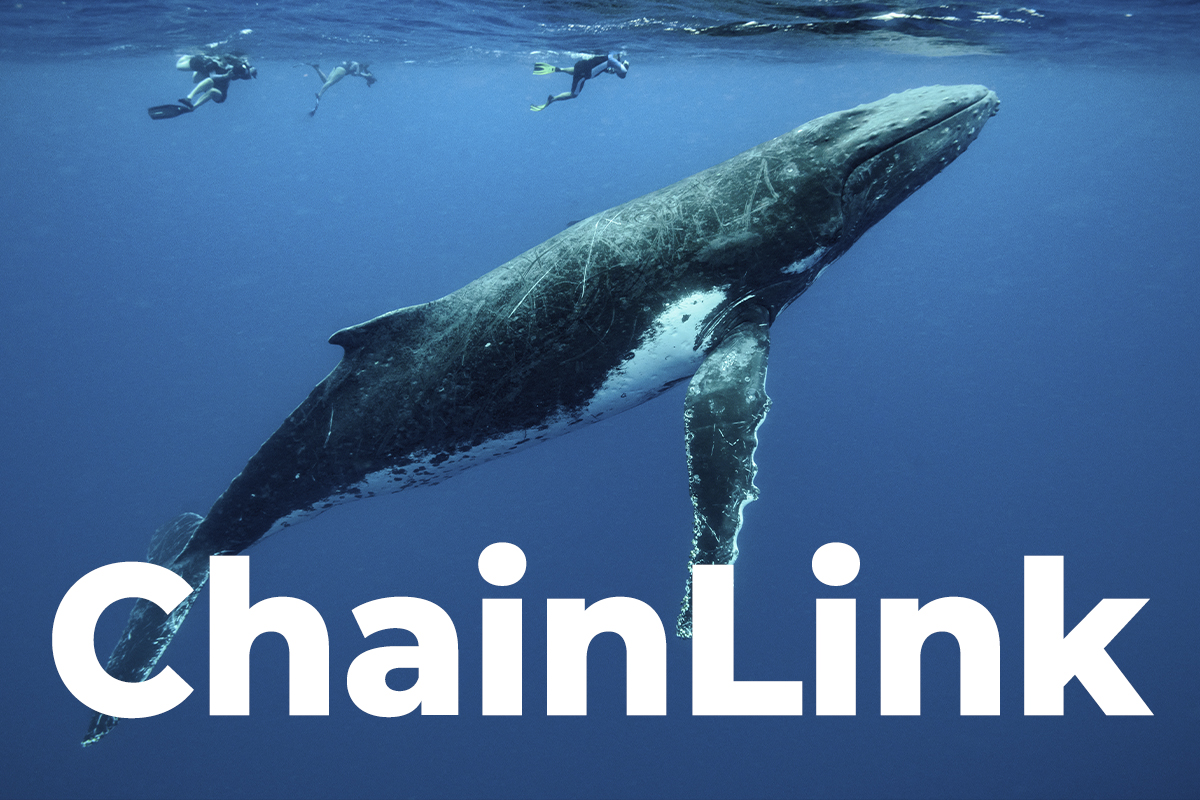 ChainLink Whales Are Not Willing To Hold Coins: Here's Why