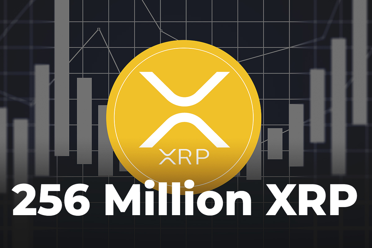 256 Million XRP Transferred from Coinbase Wallet