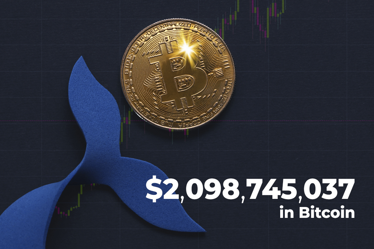 $2,098,745,037 in Bitcoin Transferred by Crypto Whales