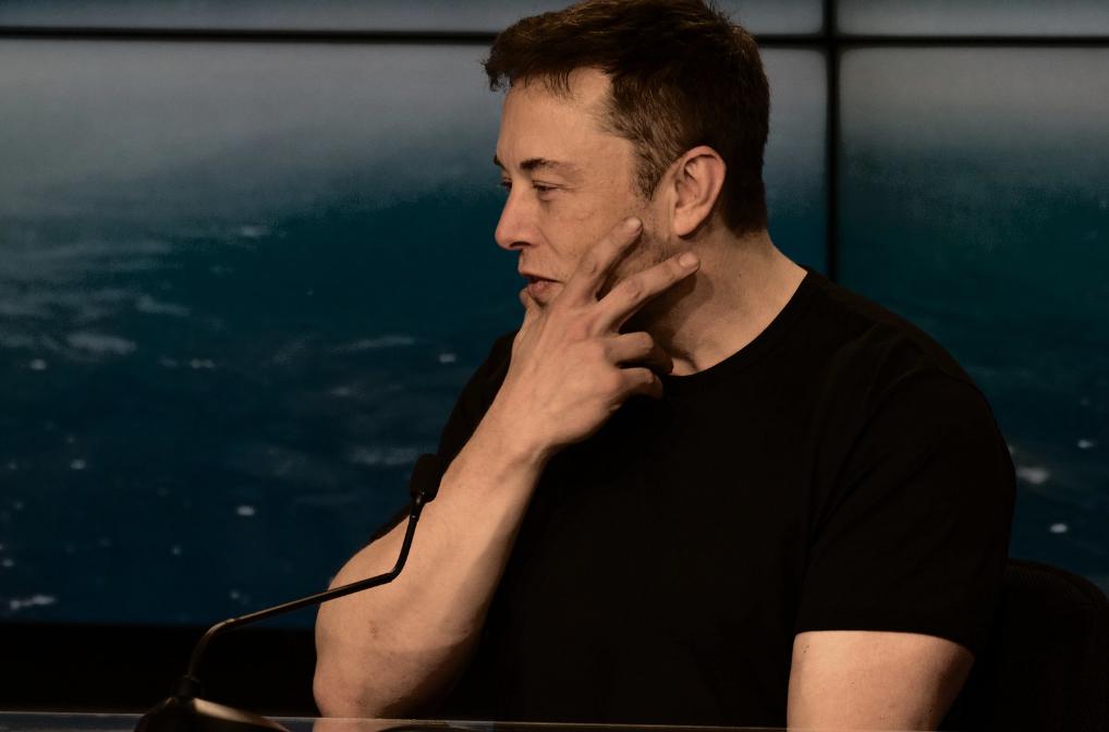 Elon Musk Praises Dogecoin-Trading Hamster for Outperforming Warren Buffett