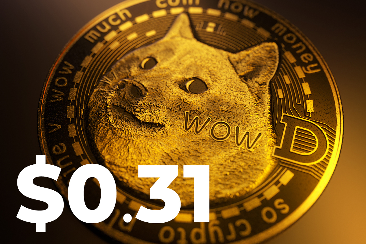 DOGE Is Back at $0.31 Without Elon Musk's Tweets, Influencer Says