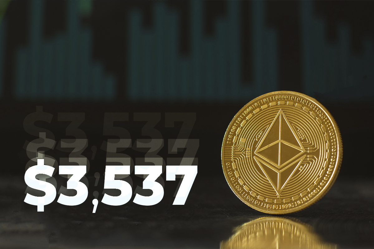 Ethereum Charges Back to $3,537 As Top 10 Largest Wallets Skyrocket in ETH Supply: Santiment Data
