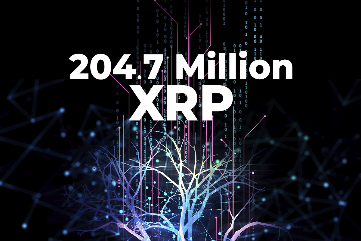 Ripple Participates in Moving 204.7 Million XRP, While Coin Drops to $1.09