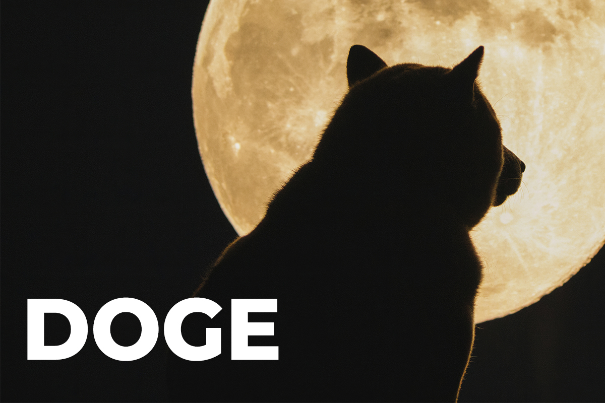 Dogecoin Co-Founder Names Two Things He Believes Will Help DOGE