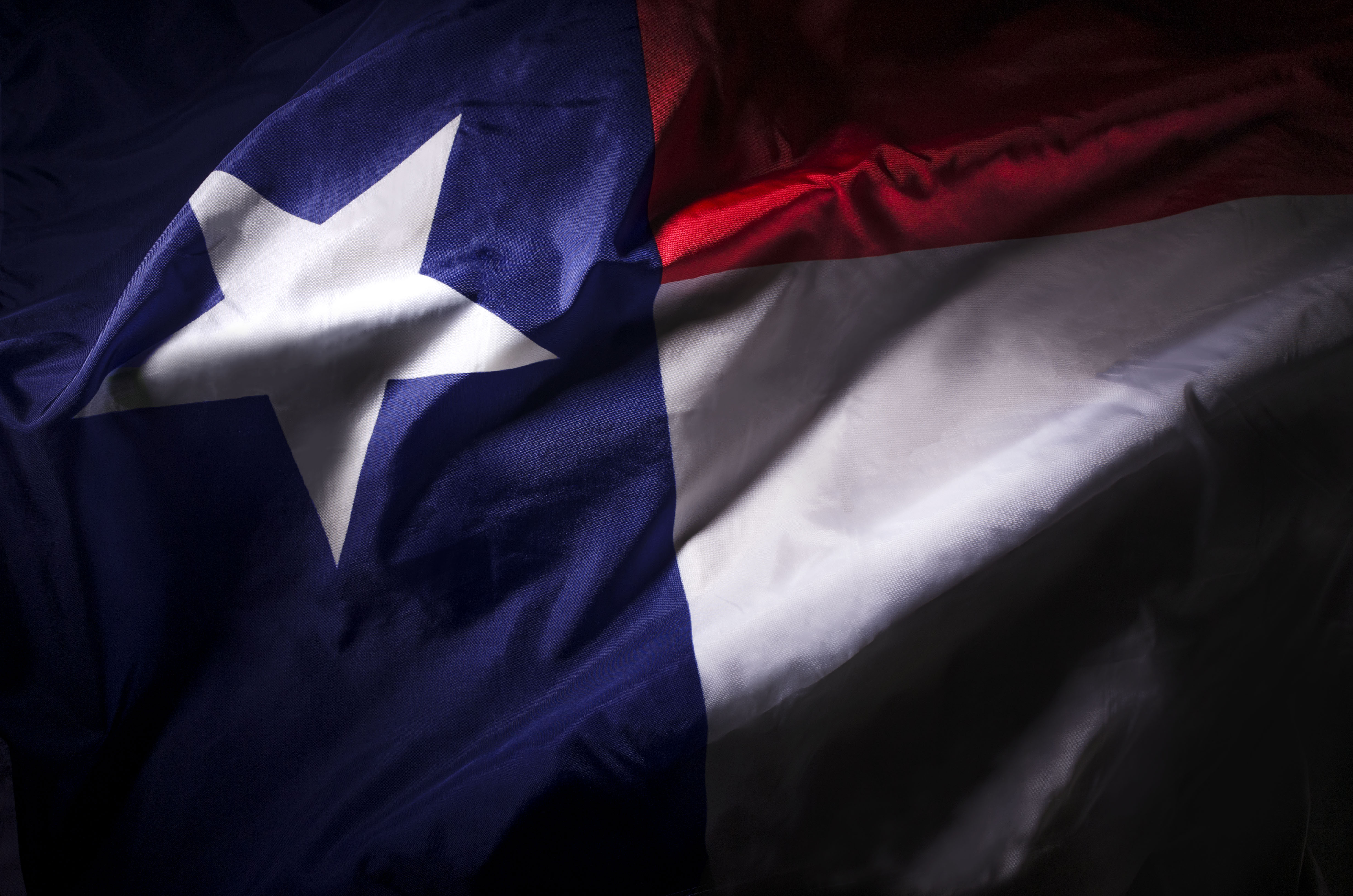 42 Percent of Texans Want to Make Bitcoin Official Currency: Poll