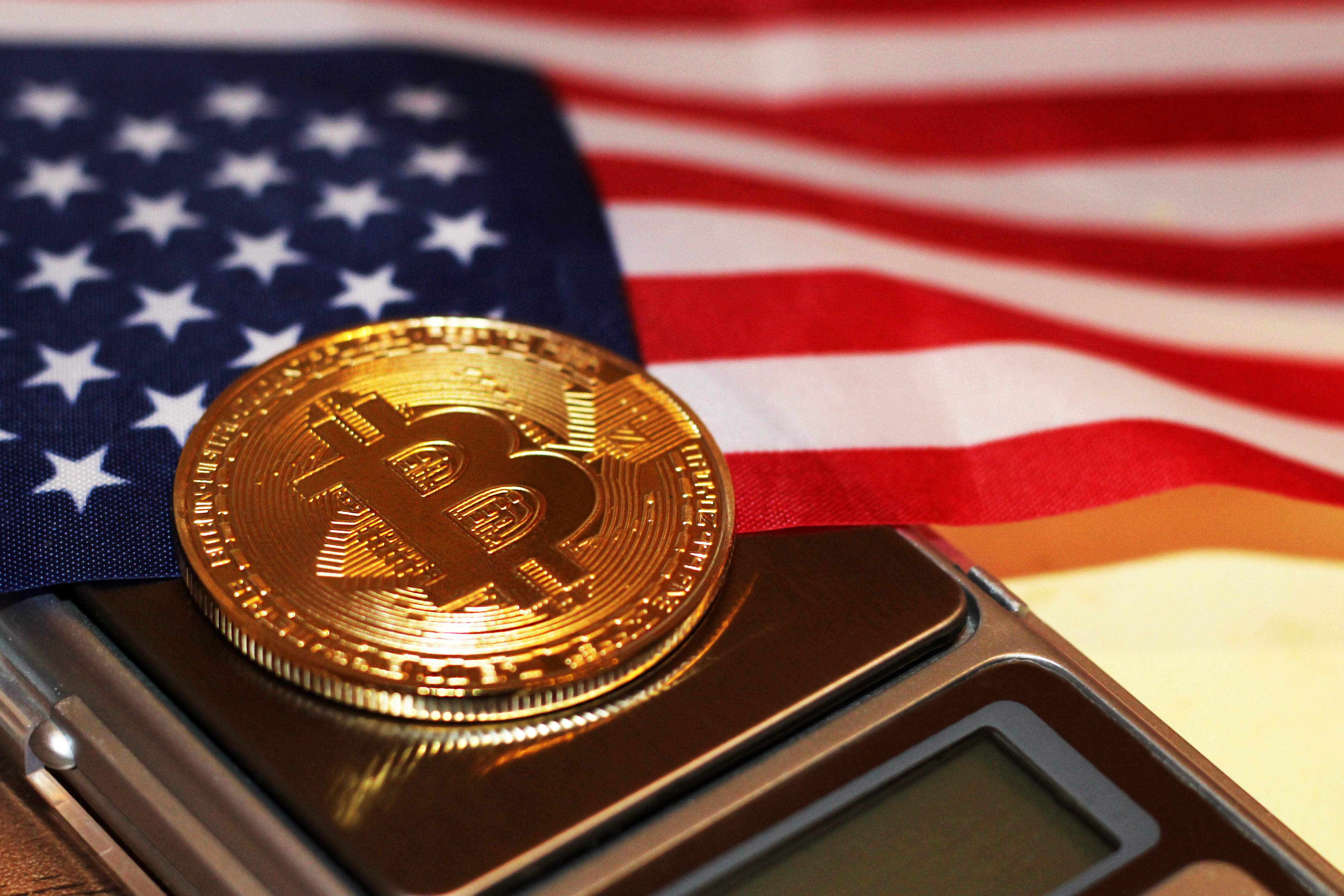 Here's How Many Americans Want to Make Bitcoin Official Currency