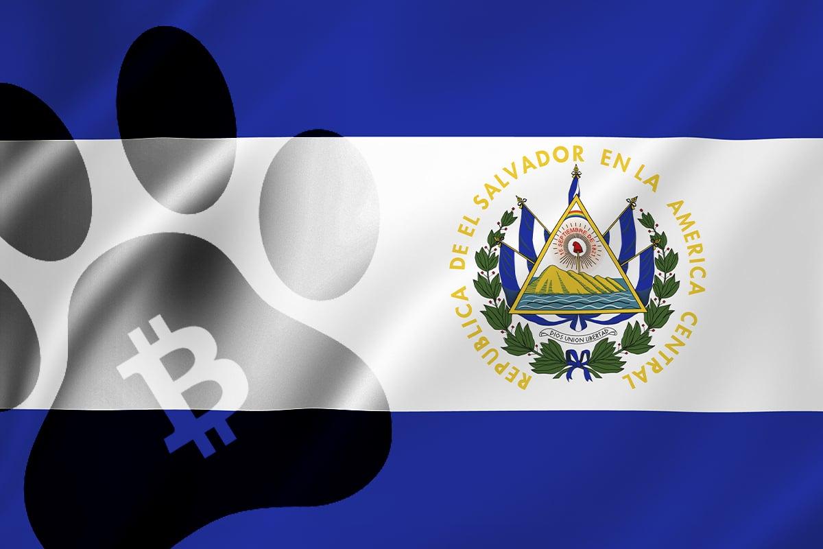 Bitcoin to Fund Construction of Vet Hospital in El Salvador