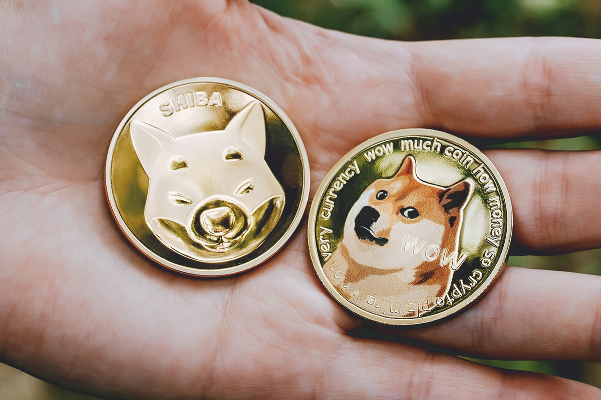 SHIB Becomes Top 11 Coin, Sitting Right Behind DOGE on CoinGecko