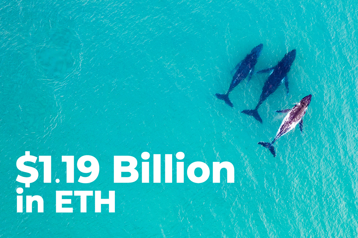 $1.19 Billion in ETH Shoveled by Whales and Top Exchanges as ETH Rises Above $3,600