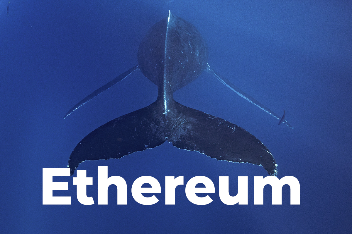 Top 10 Ethereum Non-Exchange Whales Versus Exchange Whales Ratio Hits 5:1 Peak, Here's What It Means