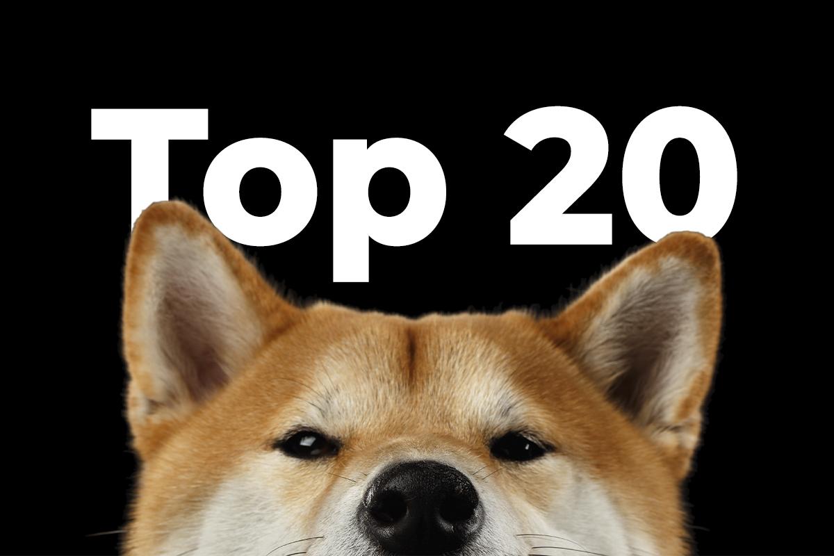 Shiba Inu Breaks Into Top 20 Amid Explosive Price Rally