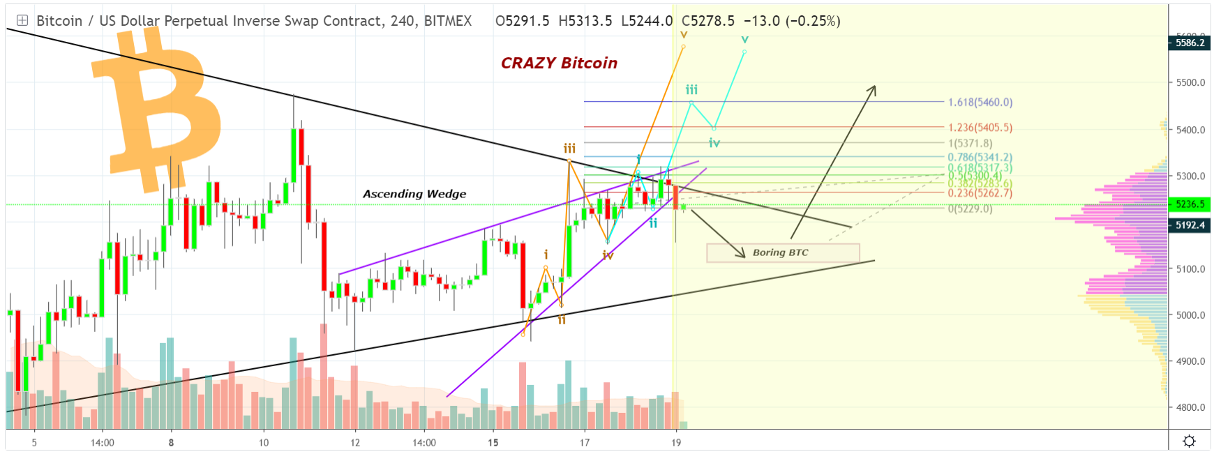 Bitcoin can take a new height thanks to 5th Elliot wave