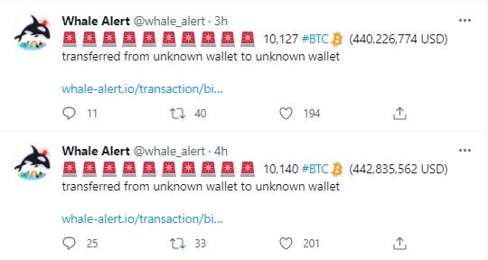 btc transferi Bitcoin balinalarından devasa BTC transferi!