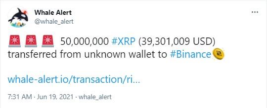 XRP190621