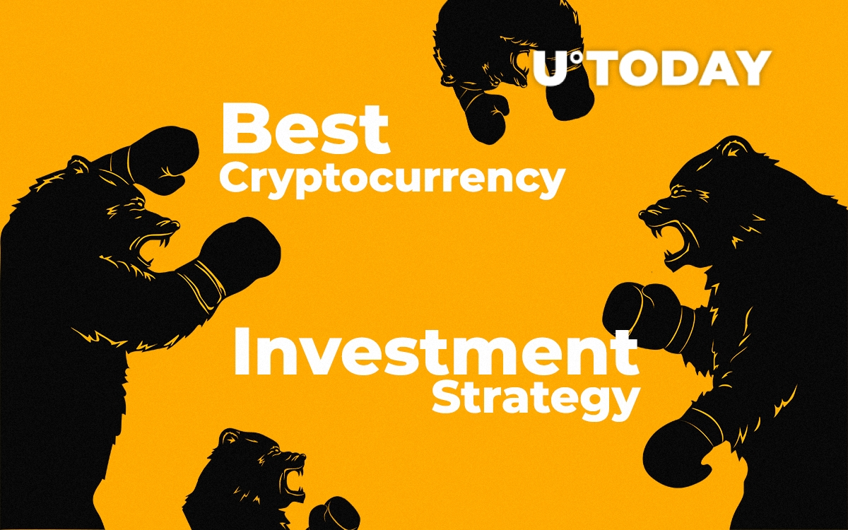 Cryptocurrency To Invest In 2019 Cryptocurrency Trading Bot