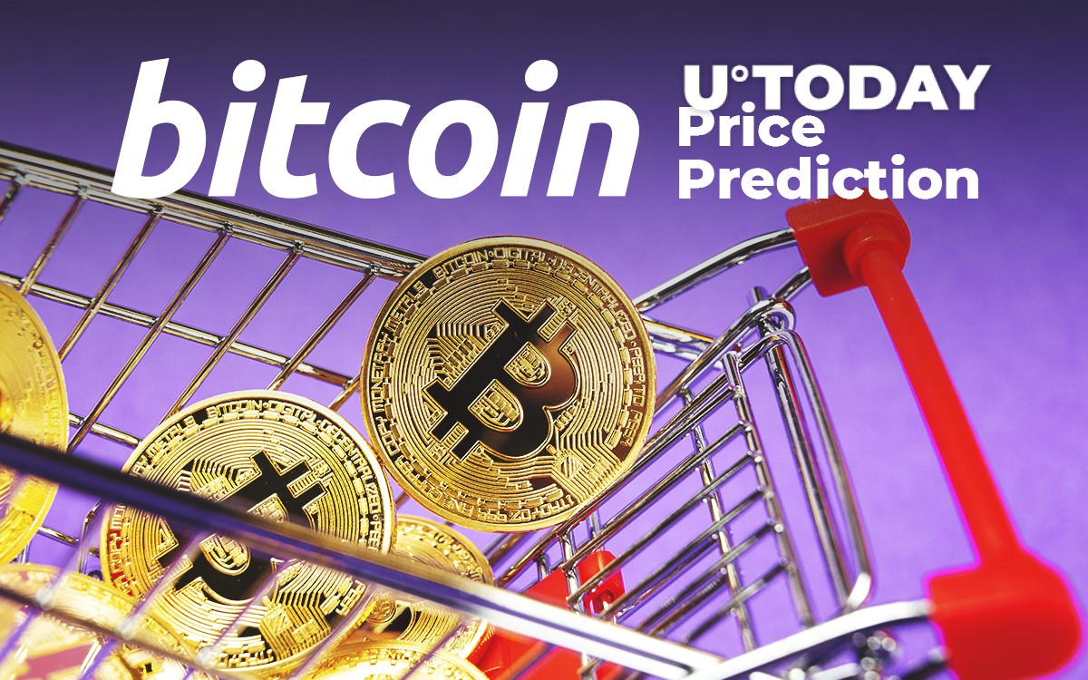Bitcoin Price Prediction: How Much Will BTC Cost in 2019