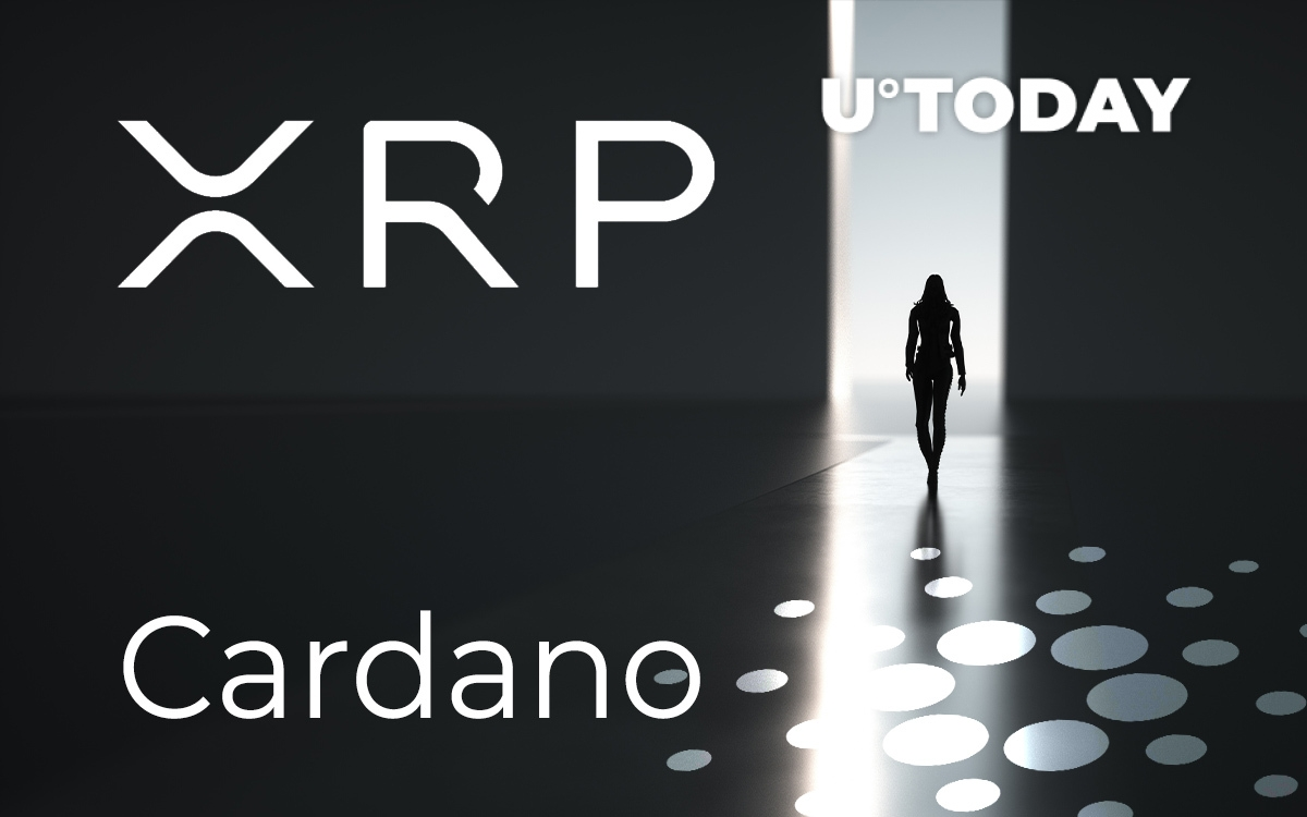 XRP About to Leave Top 5 First Time Since 2014 as Cardano (ADA) Soars 40 Percent