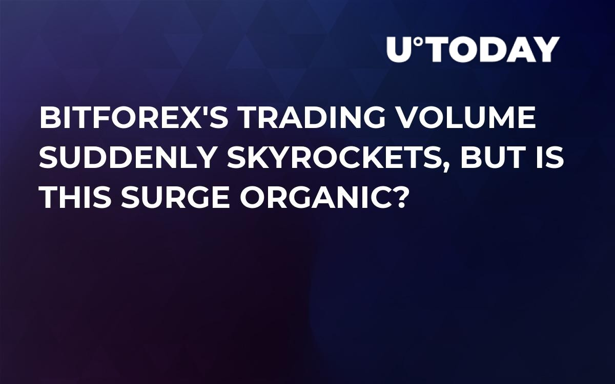 BitForex's Trading Volume Suddenly Skyrockets, But Is This Surge Organic?