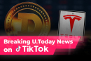 Dogecoin (DOGE) Up, TSLA Down, American Watchdogs Came for Binance: U.Today TikTok Digest