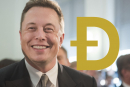 Cardano creator wants to help Elon Musk fix Dogecoin