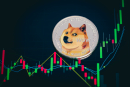 Elon Musk-touted Dogecoin becomes available on Blockchain.com