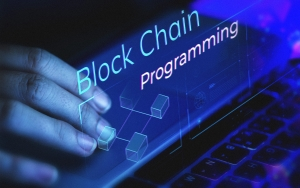 Blockchain Programming: Solidity. Programming the Smart Contracts