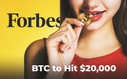 Bitcoin Price Pushed to $7,800 by BTC Whales. Forbes: BTC to Hit $20,000 in 2020