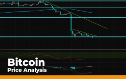 Bitcoin (BTC) Price Analysis — Indicators in Oversold Territory. Can Bulls Expect Fast Recovery?