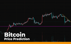 Bitcoin (BTC) Price Prediction — Trying to Hold the $10,000 Level
