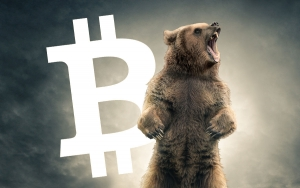 Bitcoin (BTC) 'Permabears' Common Quality Named by Trader