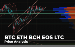 BTC, ETH, BCH, EOS, LTC Price Analysis - How Fast Can Major Coins Recover From Ongoing Decline?