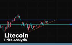 Litecoin (LTC) Price Analysis — Will Bears Retest $40 Before Going Higher?