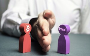 Bitcoin Maxis Explain Difference Between BTC and Ponzi, Nodding Hello to Portnoy