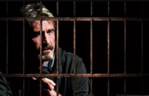 John McAfee Starts Tweeting from Prison, Brings Up Epstein Conspiracy