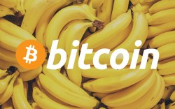One Bitcoin Now Worth 198,214 Bananas, 15 Ounces of Gold, Will This Tempt Mark Cuban to Get BTC?