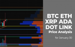 BTC, ETH, XRP, ADA, DOT and LINK Price Analysis for January 30