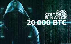 20,000 Bitcoins (BTC) Left Coinbase, OKEx, Binance. Who Is Withdrawing?