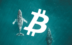 Bitcoin (BTC) Network Has Never Been So Whale Dominated: Santiment