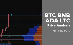BTC, BNB, ADA and LTC Price Analysis for February 10