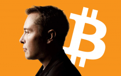 Bitcoin Fixes This: Elon Musk Slams Banks for Weak Security and High Latency