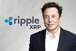 "Elon Musk Just Handed the Best ""Ad Campaign"" to Ripple and XRP: Attorney John Deaton"