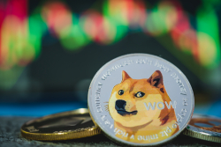 Dogecoin's Market Cap Grows to $90 Billion, But Spencer Bogart Warns It Has No Real Users