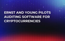 Ernst and Young Pilots Auditing Software for Cryptocurrencies