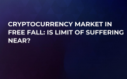 Cryptocurrency Market in Free Fall: Is Limit of Suffering Near?