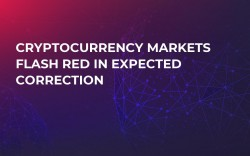 Cryptocurrency Markets Flash Red in Expected Correction