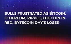 Bulls Frustrated as Bitcoin, Ethereum, Ripple, Litecoin in Red, Bytecoin Day's Loser